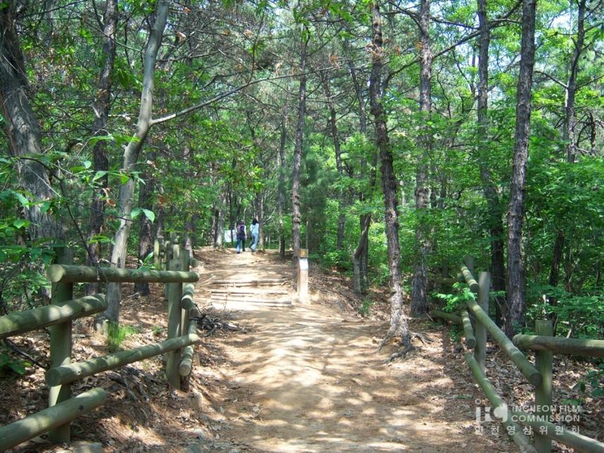 인천 대공원 (31).jpg
